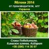 Яблоки 2014 Яблоки опт,  яблоки свежие Украина