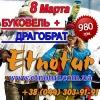 8 Марта 2014 тур на Буковель.  Туроператор Этнотур