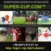 Super-Cup Долгосрочные инвестиции 2015