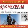 Физическая охрана 2013 объектов.  Киев,  Украина