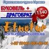 Регулярные горнолыжные туры на Буковель 2017