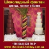 Шоколадный фонтан 2013 Аренда,  прокат в Киеве