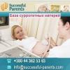 Срочно.  Суррогатные мамы для программ 2014-2015 Киев