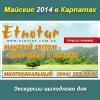 Туры экскурсии Майские праздники 2014 в Карпатах