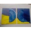 Предлагаю CD  - 0,      5 грн.      /альбом,          опт,            популярные песни Украинских исполнителей mp3,             CD