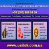 Музыкальные 2014 Инструменты и оборудование